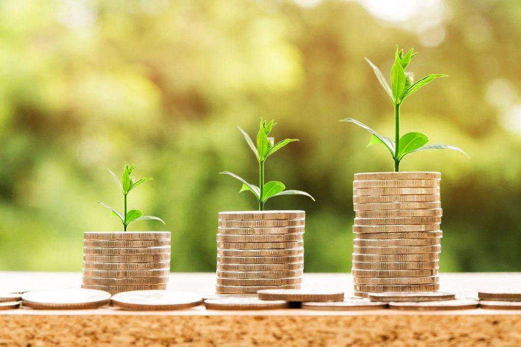 מגדלי כסף בצמיחה